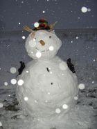Bonhomme de neige ..