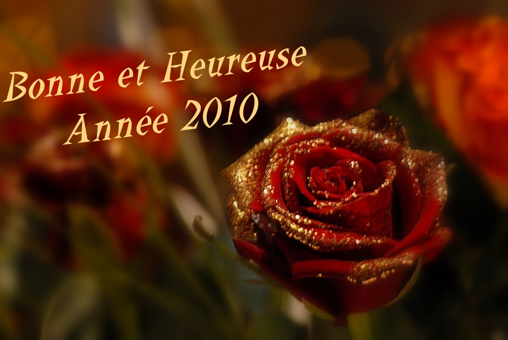 BONNE ET HEUREUSE ANNEE 2010