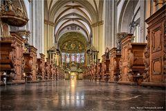 Bonner Münster ....