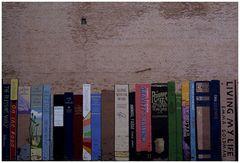 *bookshelf*