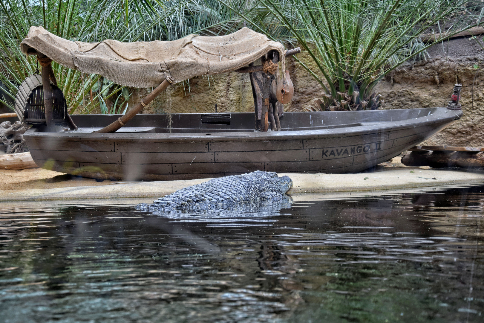 Boot und Krokodil