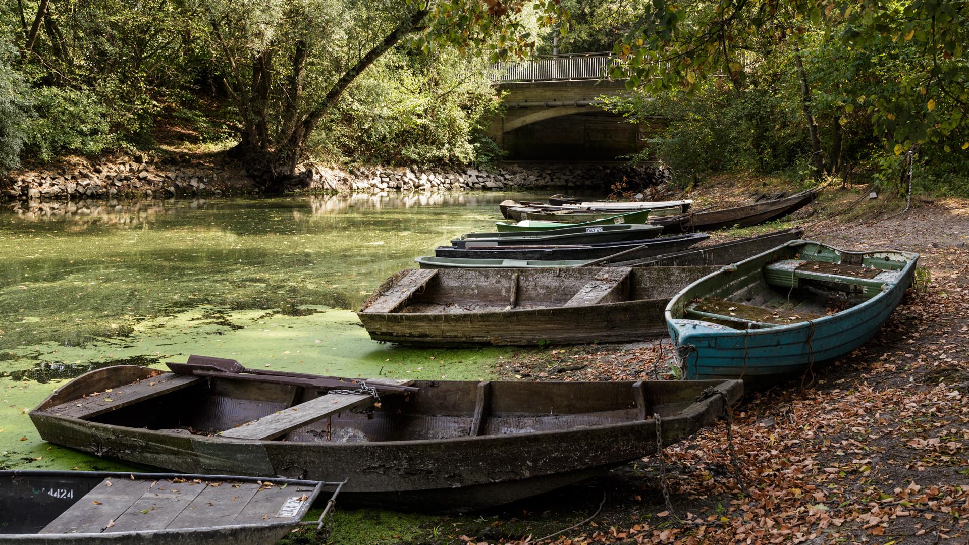 Boote am Altrhein / Daxlanden