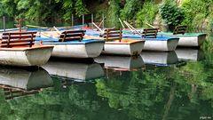 Boote im grünen Blausee
