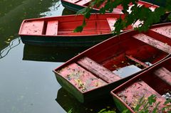 Boote im Herbst