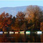 Boote in der Abendsonne