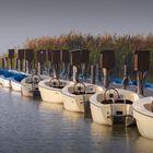 Boote in Podersdorf