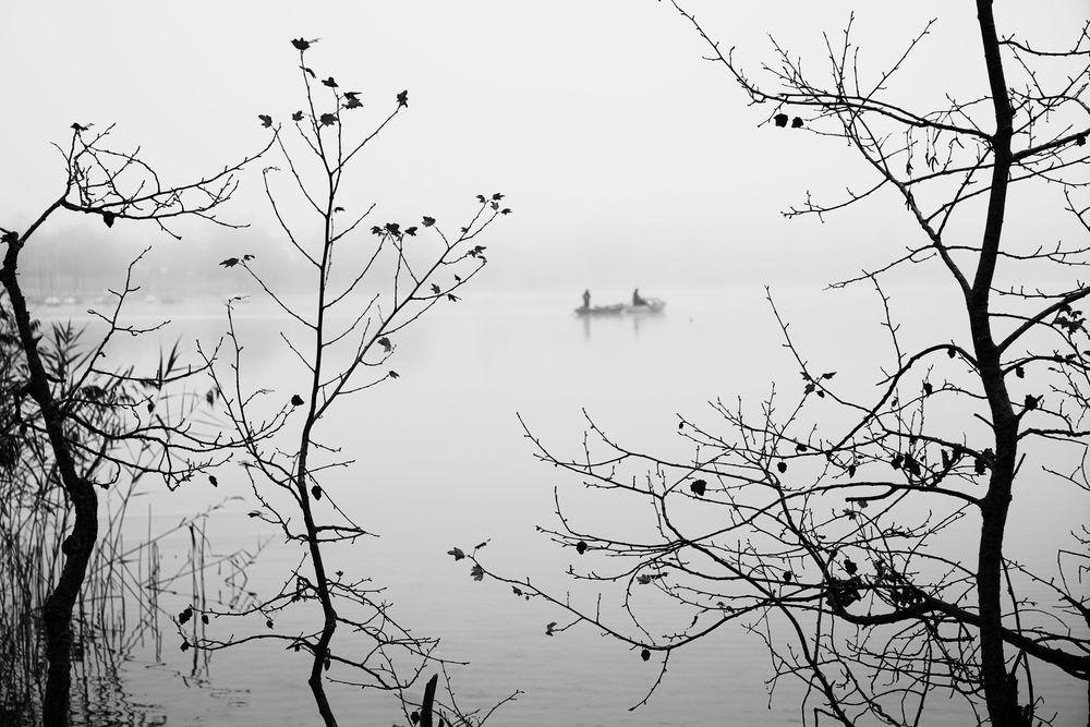 Boote zwischen Zweigen...