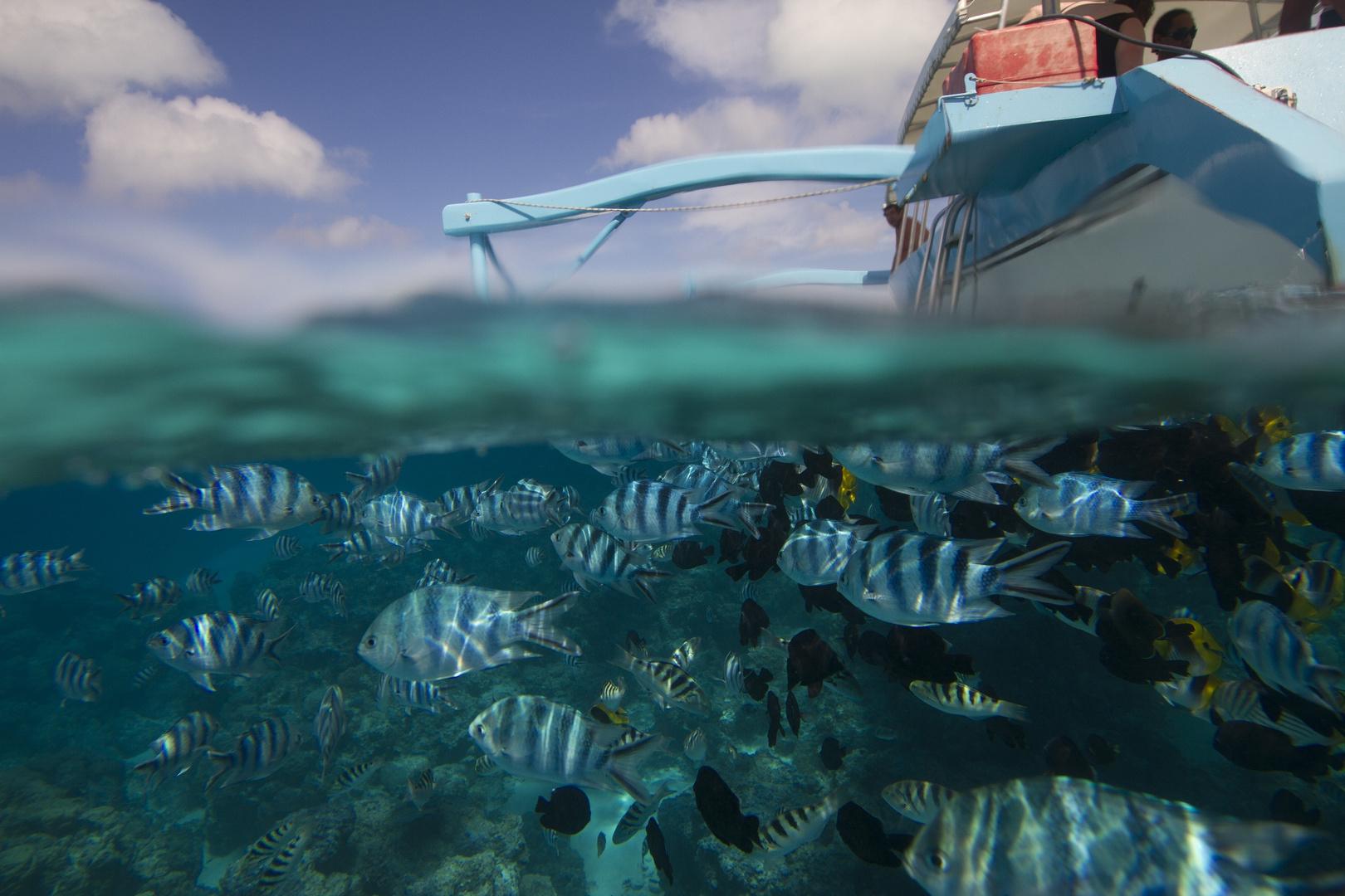 Bora Bora - Franz. Polynesien