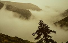 Boraikosschlucht im Nebel, Griechenland.       ..DSC_6751