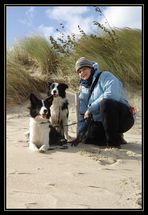 Border-Collie 's am Strand