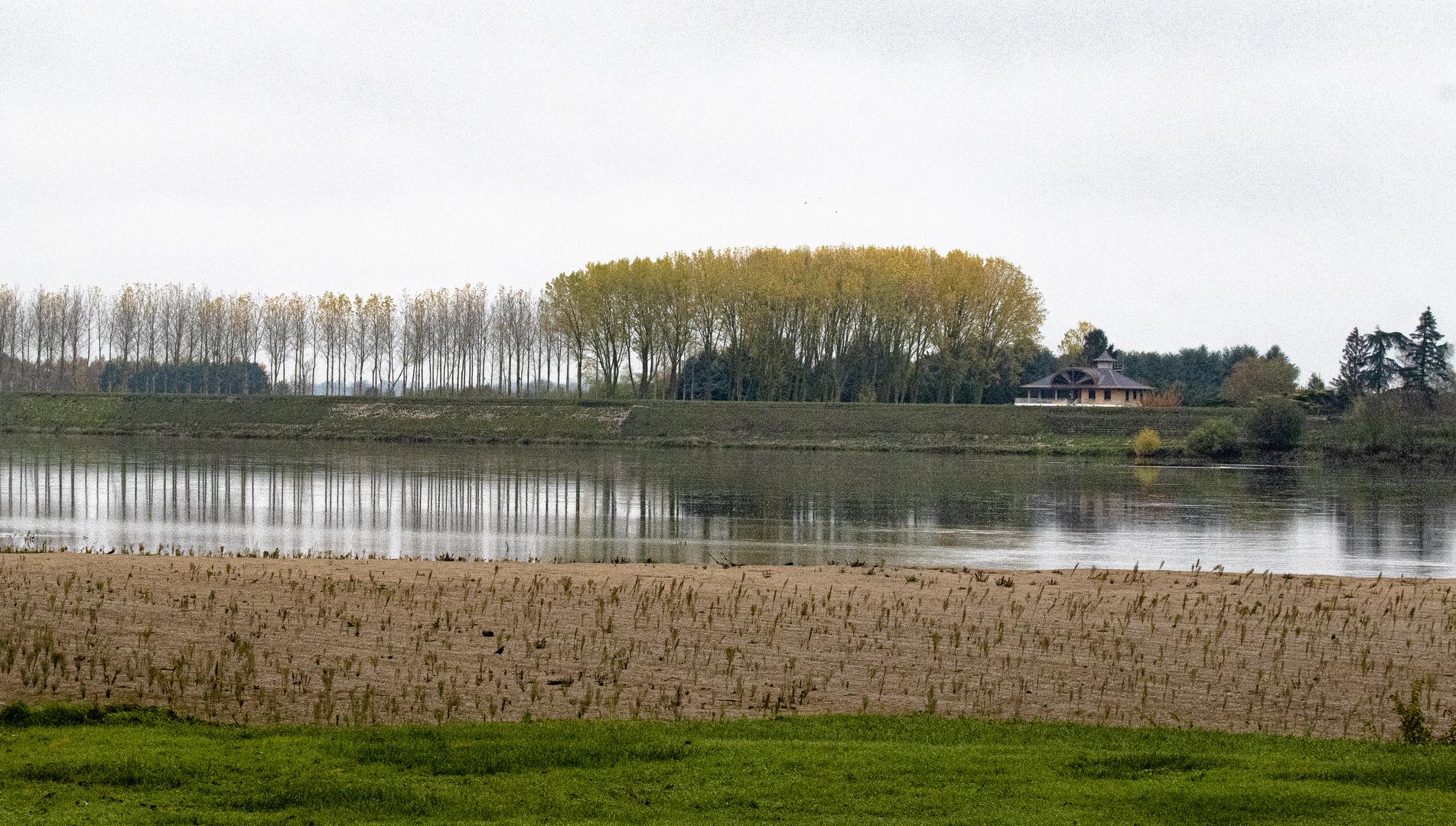 bords de Loire #1