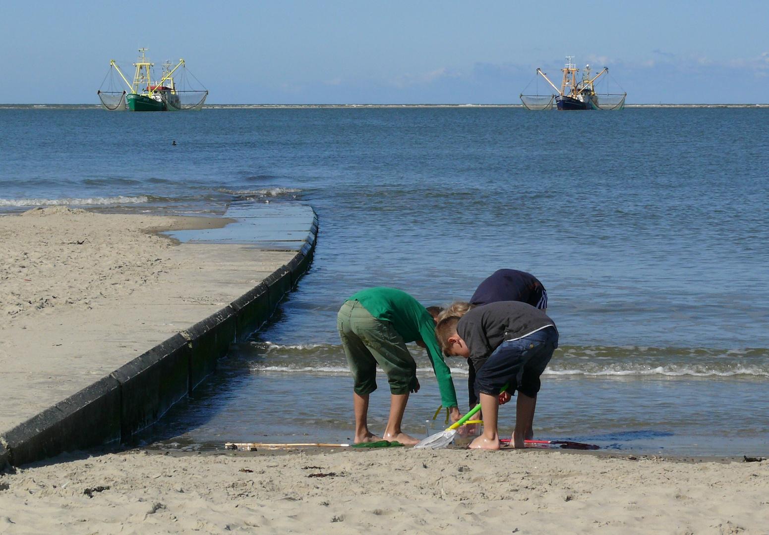 Borkum - Hobby- und Berufsfischer