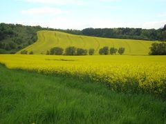 Bornhagen (2)