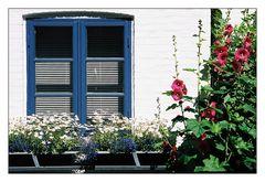 Bornholmer Fenster