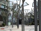 Bosque de metal y luz