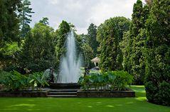 Botanischen Garten