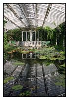 Botanischer Garten 2