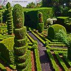 Botanischer Garten auf Madeira