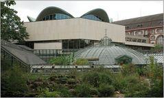 ... Botanischer Garten Basel ...