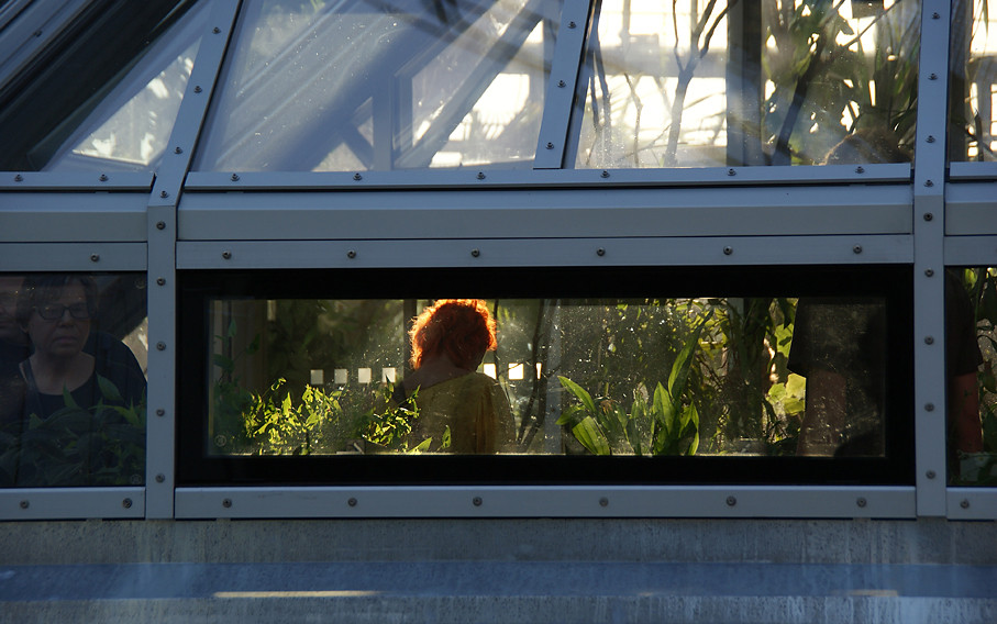 Botanischer Garten Berlin, 19.09.09 – 11