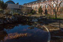 Botanischer Garten der Uni Basel 06