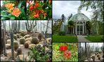 Botanischer Garten Genf