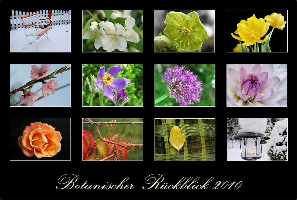 Botanischer Rückblick 2010