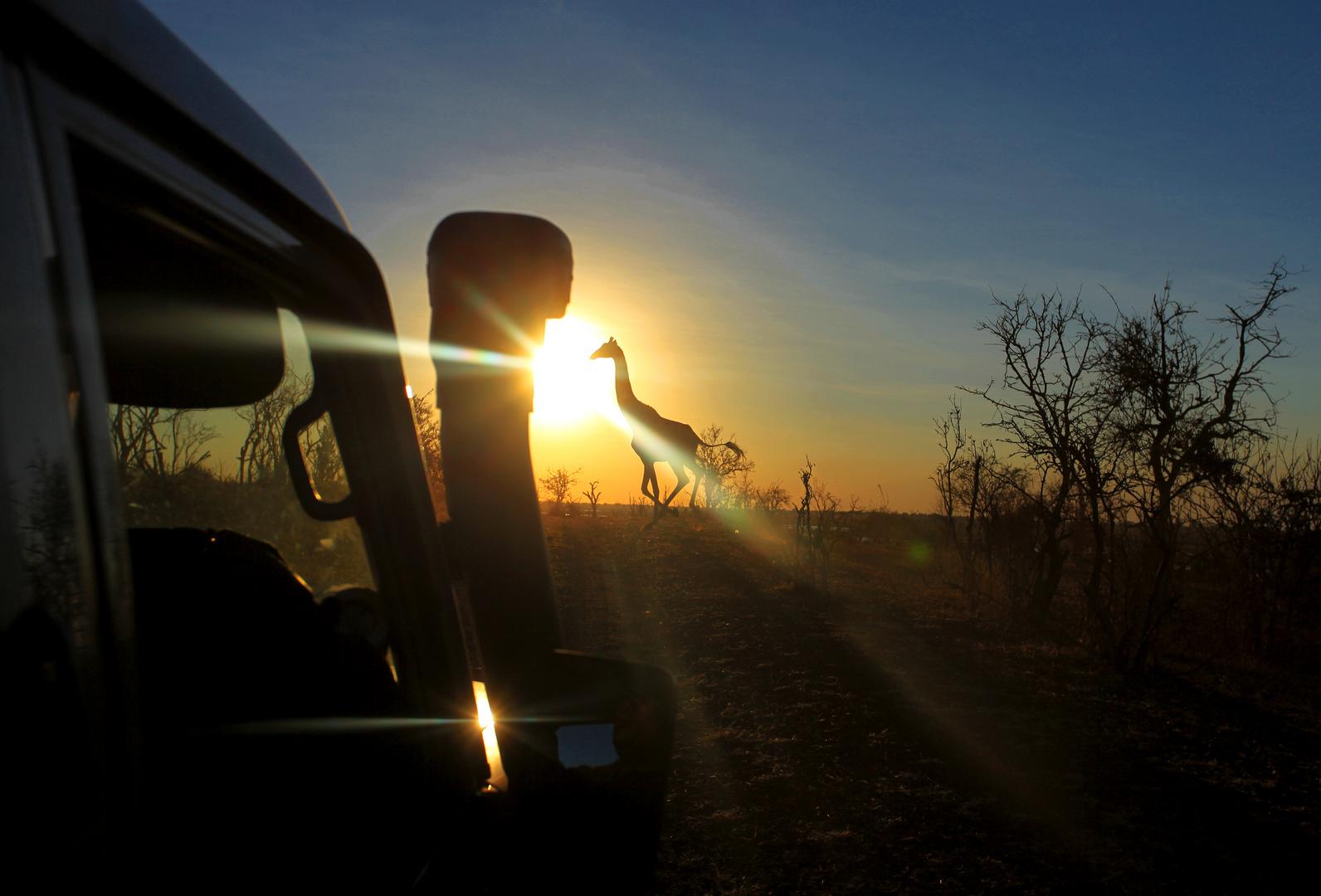 Botswana: Chobe Nationalpark 4