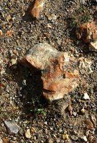 Bouille en pierre