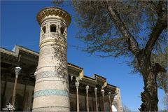 Boukhara VIII