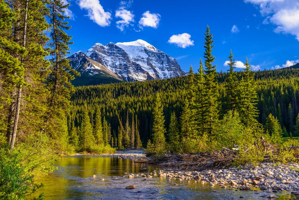 Bow River & Mount Temple, Banff NP, CA