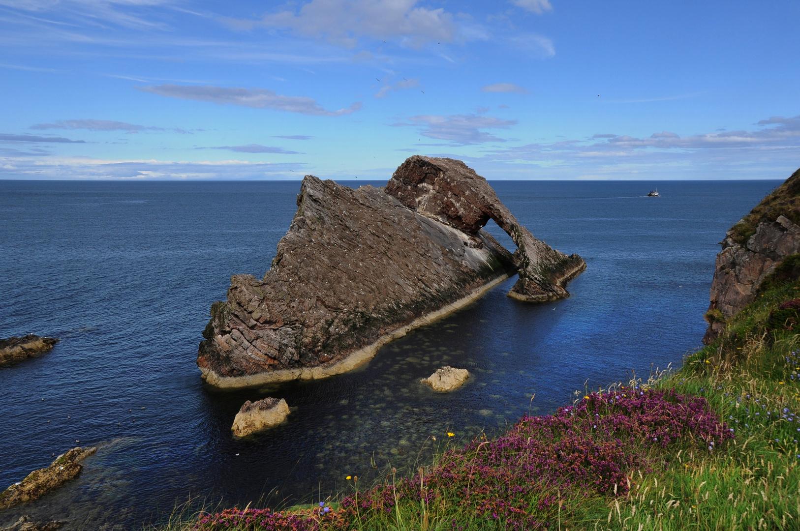 Bowfiddle Rock