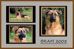 BRAM 2