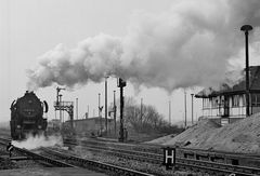 Brandenburg 1984