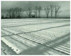 Brandenburg im Schnee