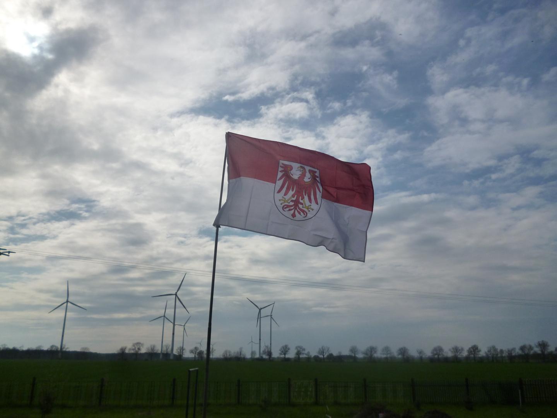 Brandenburger Flagge im Winde