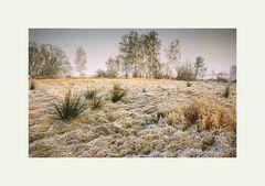 Brandenburger Winterlandschaft