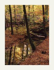brandenburgische Landschaft