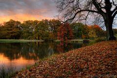 Branitzer Herbst
