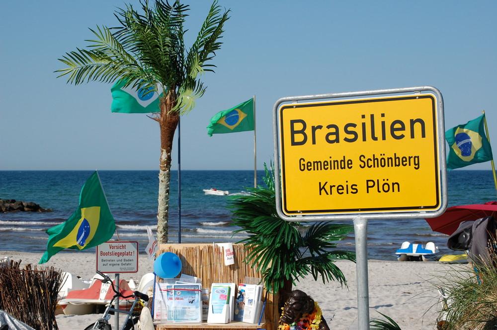 Frisch Vom Brasilianischen Strand