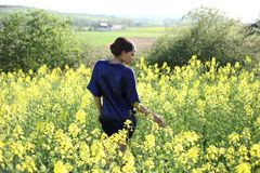 Brassica napus 10