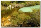 braun / grüne Landschaft