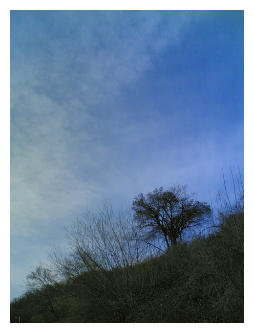 Braun und Blau