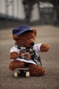 Brauni der Bär