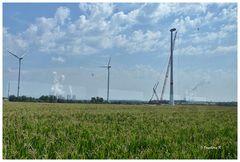 Braunkohlentagebau - rekultiviertes Gebiet - mit Windrädern