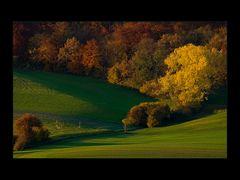Brausender Orgelklang des Herbstes...- oder: Herbst-Schwung...