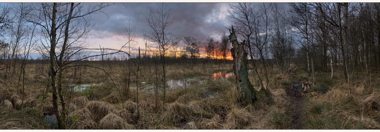 Brennender Himmel im Henstedter Moor (Reload)