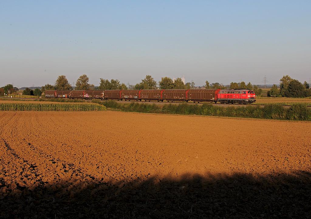 Brenzbahn: Güterzug im Abendlicht