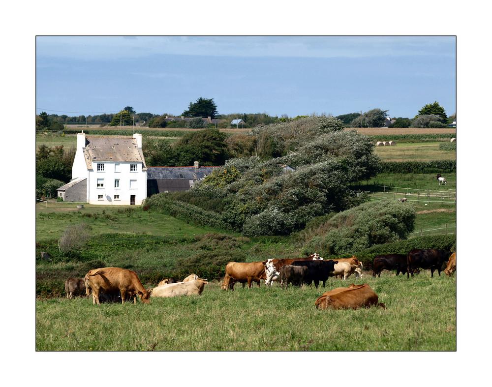 Bretagne rurale