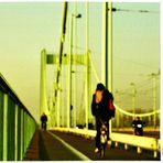 •bridge•